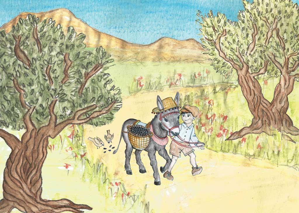 Olive Groves Σπανάκης Βιολογικό ελαιόλαδο