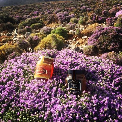 Cretan Honey - Thymes