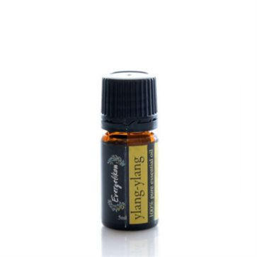 Essential Oil Ylang-Ylang  Evergetikon