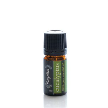 Essential Oil Eucalyptus Evergetikon